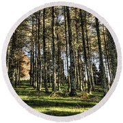 Shadows Of The Larch Forest Sunset No2 Round Beach Towel