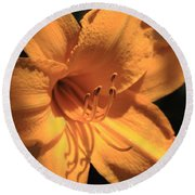 Day Lily Shadows Round Beach Towel