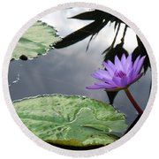 Shadows On A Lily Pond Round Beach Towel