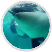 Shamu Was  1965-1971 Orca Sea World California 1968 Round Beach Towel