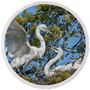 Sharing The Nest Round Beach Towel