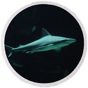 Shark-09451 Round Beach Towel