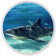 Shark In Depth Round Beach Towel