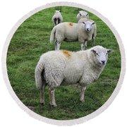 Sheep On Parade Round Beach Towel