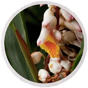 Shell Ginger Round Beach Towel