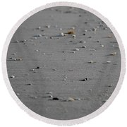 Shell Line Round Beach Towel