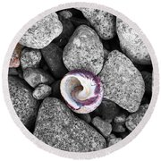 Shell On The Shore 2 Round Beach Towel