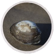 Shell Or Someone's Dinner Round Beach Towel