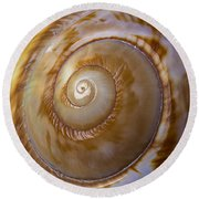 Shell Spiral Round Beach Towel