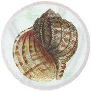 Shell Treasure-c Round Beach Towel