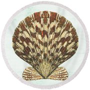 Shell Treasure-d Round Beach Towel