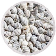 Shells Round Beach Towel