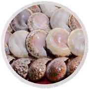 Shells In A Row Round Beach Towel