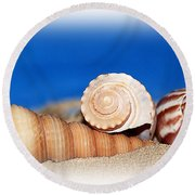 Shells In Sand Round Beach Towel