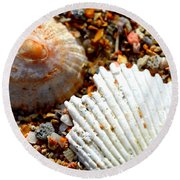 Shells On Sand Round Beach Towel
