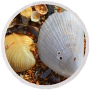 Shells On Sand2 Round Beach Towel by Riad Belhimer
