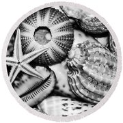 Shellscape In Monochrome Round Beach Towel
