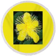 Shimmer Yellow Flower Round Beach Towel