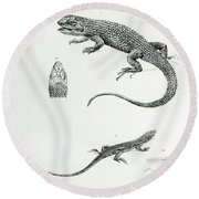 Shingled Iguana Round Beach Towel