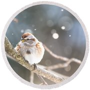 Shiny Tree Sparrow Round Beach Towel