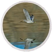 Short-billed Dowitcher And Reflection Round Beach Towel
