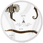 Short Dragonfish Round Beach Towel