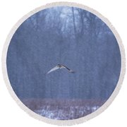 Short Eared Owl In Motion Round Beach Towel