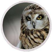 Short Eared Owl Portrait Round Beach Towel