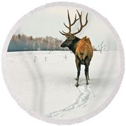 Shortest Distance Elk Round Beach Towel