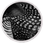 Shy Loon - Painted Rock - Seabird - One Of A Kind Round Beach Towel