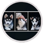 Siberian Husky Puppies Mans Best Friend Round Beach Towel