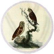 Siberian Owl And Acadian Owl Round Beach Towel