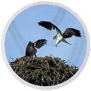 Sibling Rivalry Round Beach Towel