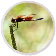 Side View Of A Calico Pennant Round Beach Towel