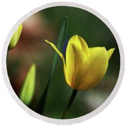 Signs Of Spring II Round Beach Towel