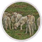 Silence Of The Lambs Round Beach Towel
