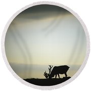 Silhouette Of A Male Caribou At Sunset Round Beach Towel
