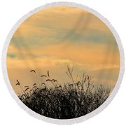 Silhouette Of Grass And Weeds Against The Color Of The Setting Sun Round Beach Towel