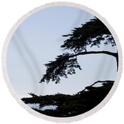 Silhouette Of Monterey Cypress Tree Round Beach Towel