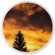 Silhouetted Evergreen Tree Round Beach Towel