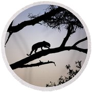 Silhouetted Leopard Round Beach Towel