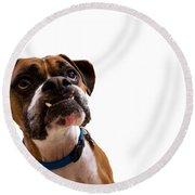 Silly Boxer Dog Round Beach Towel