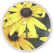 Silly Susans Spider Round Beach Towel