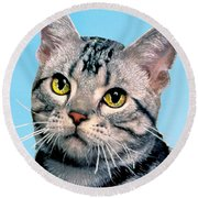 Silver Tabby Kitten Original Painting For Sale Round Beach Towel
