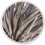 Silversword Detail Round Beach Towel