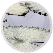 Silvery Sage Green Lily Pads Round Beach Towel