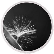 Simpliest Beauty - Bw Round Beach Towel