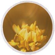 Simplistic Yellow Clover Flower  Round Beach Towel