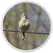 Singing His Heart Out - Carolina Wren - Thryothorus Ludovicianus Round Beach Towel