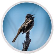 Singing Song Sparrow Round Beach Towel
